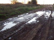 Camino-rural
