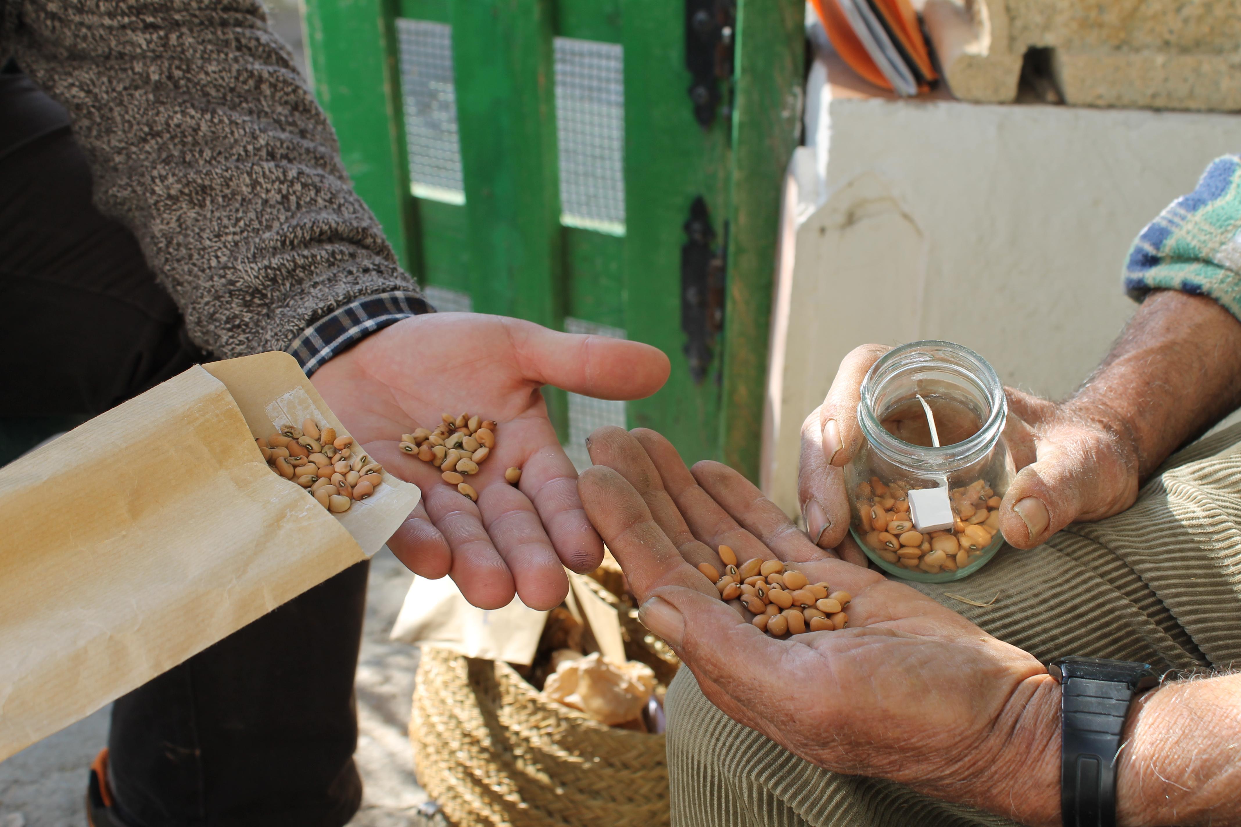 intercambio-de-semillas