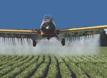 agrotoxicos-709905-780x405