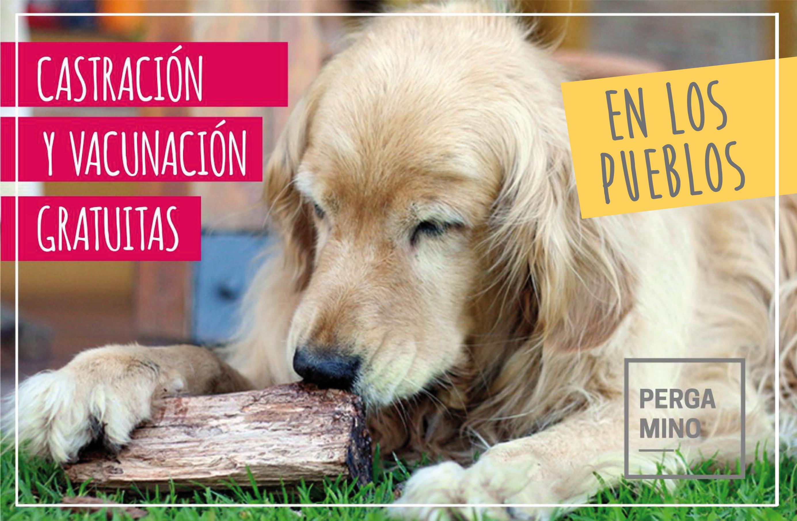 CASTRACION EN LOS PUEBLOS-01