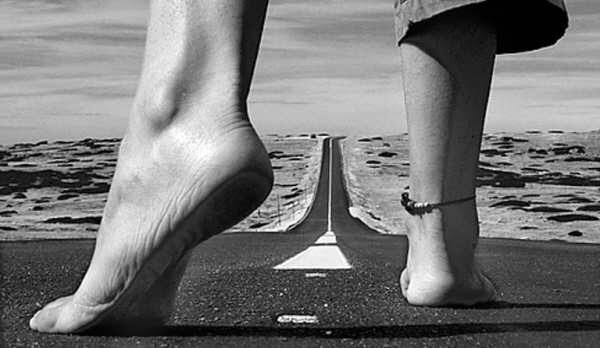 largo-camino (1)